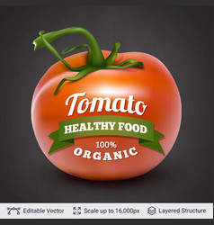 Tomato and text vector
