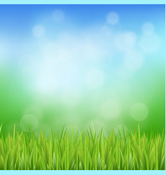 green spring or summer abstract background vector image