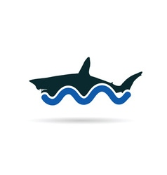 Shark icon color vector