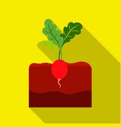 Radish icon flat single plant icon from the big vector