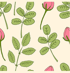 seamless pattern with pink rose buds and leaves vector image