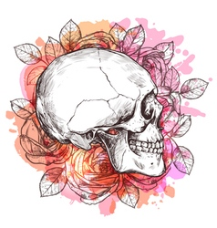 Skull and flowers hand drawn sketch vector