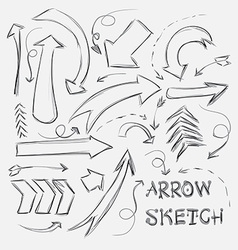 Collection of sketch arrows hand-drawn on a white vector