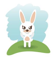 Cute rabbit animal wildlife vector