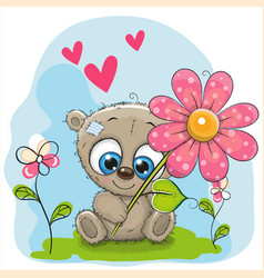 greeting card bear with flower and hearts vector image