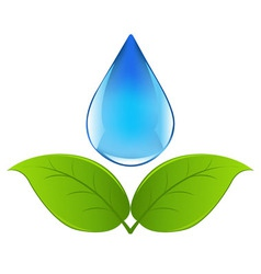 Drop of water vector