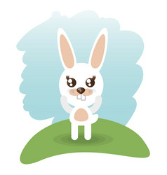 cute rabbit animal wildlife vector image