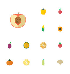 Flat icons peach lime maize and other vector