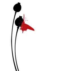 poppy bolls vector image vector image