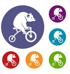 Bear on a bike icons set vector