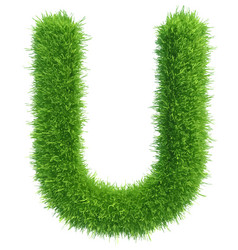 capital letter u from grass on white vector image vector image