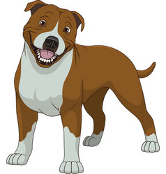 Funny purebred staffordshire bull terrier vector