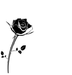 Silhouette of rose flower on a white background vector