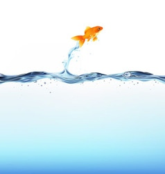 Goldfish water vector