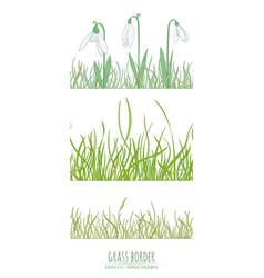grass natural border vector image