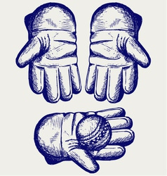Cricket ball in a wicket keeping glove vector image