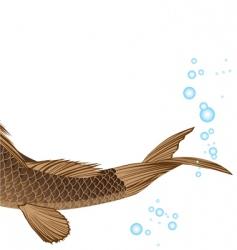 Tail carp vector