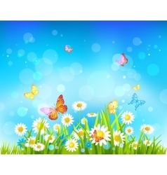 Sunny day background with flowers and butterflies vector image