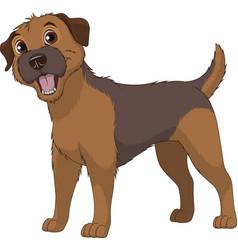 funny purebred border terrier vector image