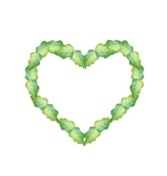 Fresh Green Leaves in Beautiful Heart Shape vector image vector image
