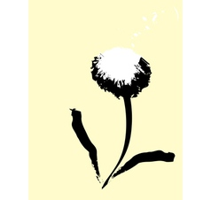 common dandelion vector image