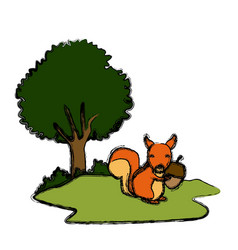 squirrel animal cartoon vector image