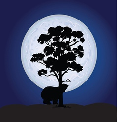 Bear on a moonlight color vector