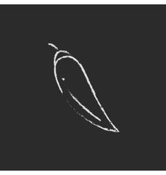Chilli icon drawn in chalk vector