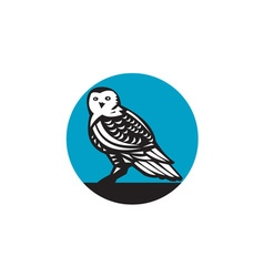 Snowy owl circle retro vector