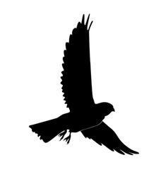 Black silhouette of kestrel vector