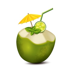 Cocktail in coconut vector