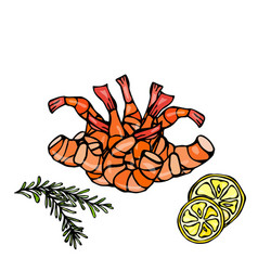 cooked shrimp or prawn cocktail herbs and lemon vector image