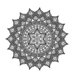 elegant frame circle decoration isolated vector image