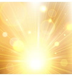 Yellow summer sun light burst vector
