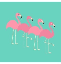 Pink flamingo set exotic tropical bird zoo vector