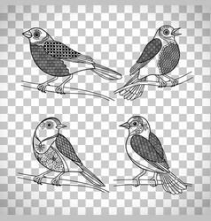 Birds with doodle decoration vector