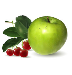 Fruit green apple and cherry vector