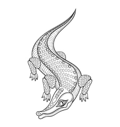 Hand drawn zentangled Crocodile for adult coloring vector image vector image