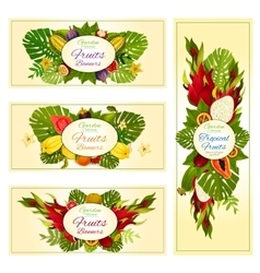 Tropical and exotic fruit banners for food design vector