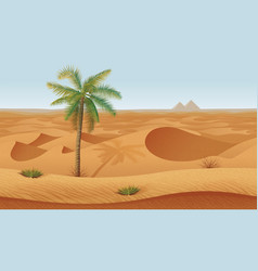 horizontal seamless background with desert palms vector image