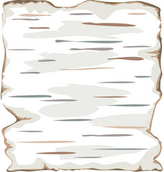 Birch bark background frame isolate vector
