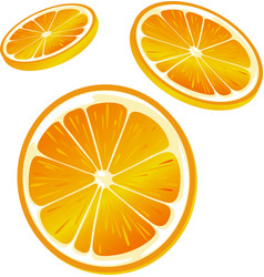 Orange slice - isolated on white background vector