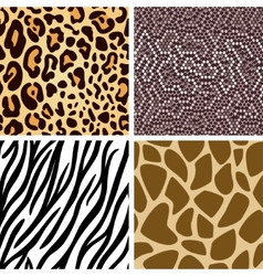 Animal skin seamless pattern collection vector image