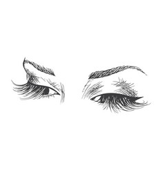 beautiful eyes with long eyelashes vector image