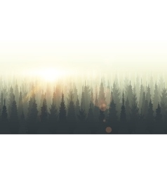 Coniferous forest silhouette template sunset vector
