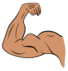 Strong male arm symbol of power and muscle vector