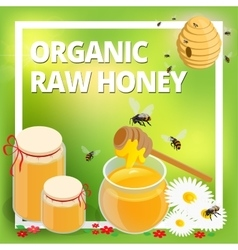 Organic raw honey concept honeycomb honey ladle vector