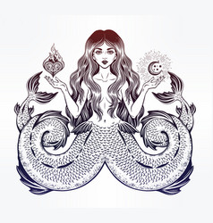 alchemy melusine siren twin-tailed mermaid girl vector image vector image
