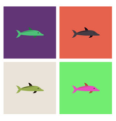 Dolphin delphinus delphis collection vector