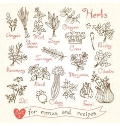 Set drawings of herbs for design menus recipes vector image vector image